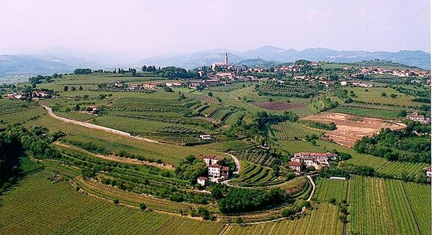 Schoko-Genüsse und mehr im Est Veronese