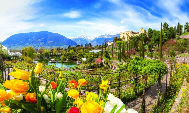 Frühjahrserwachen in den Gärten von Schloss Trauttmansdorff