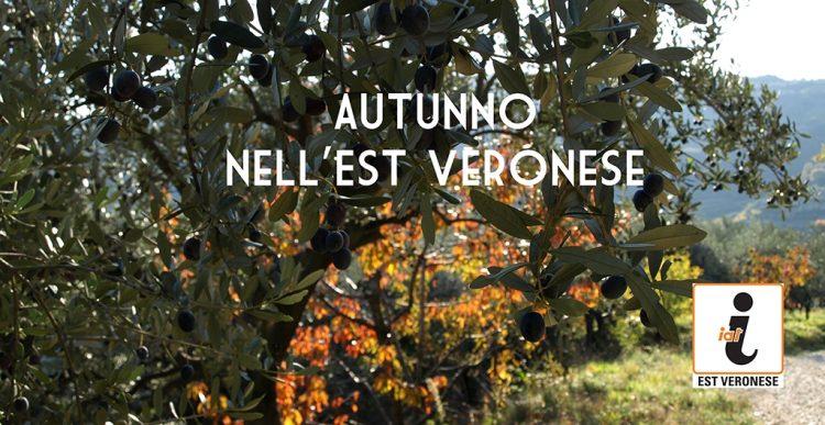 Die nächsten Veranstaltungen im Osten von Verona