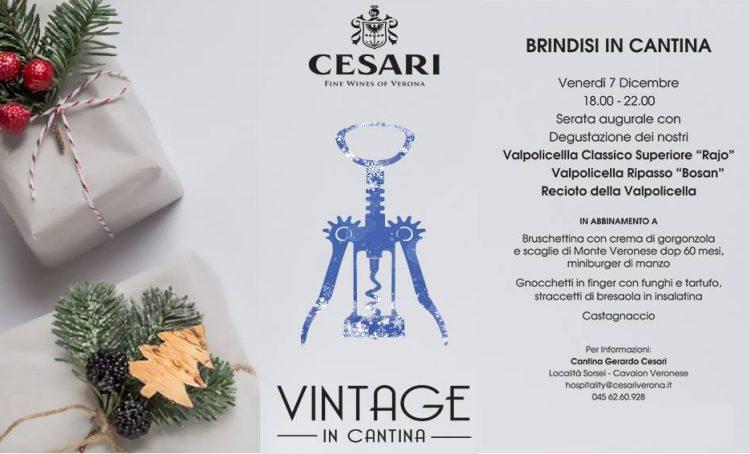 Vintage im Weinkeller Cesari
