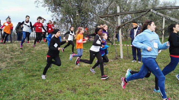 """20. Geländelauf von Bardolino – Trophäe """"Az. Agricola Costadoro"""""""