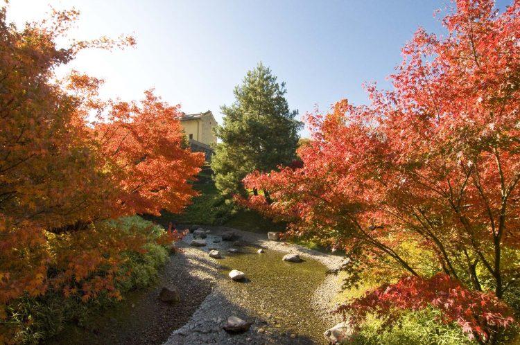 """Der """"Internationale Garten des Jahres"""" beendet eine erfolgreiche Saison 2013"""