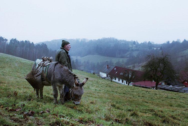 Film Festival im Lessinia-Gebirge