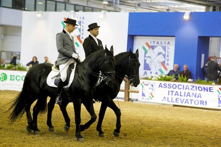 In wenigen Tagen beginnt die 119. Pferdemesse in Verona