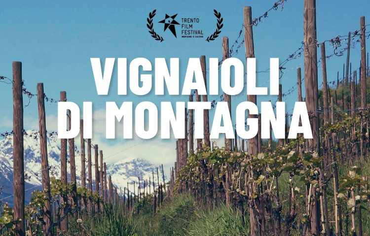 Bergwinzer: Wein und Kino treffen sich in Bologna