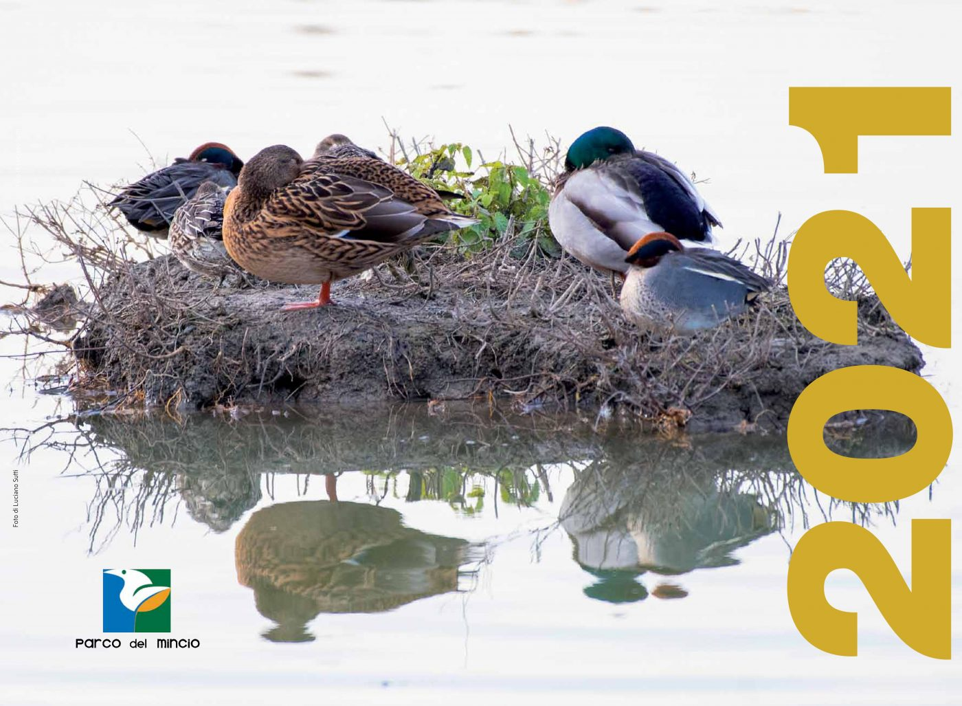 Biodiversität ist der Protagonist des Kalenders 2021 des Parco del Mincio