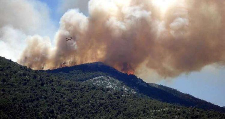 Feueralarm: In Brenzone und Torri del Benaco ist es verboten, Feuer im Freien zu entzünden
