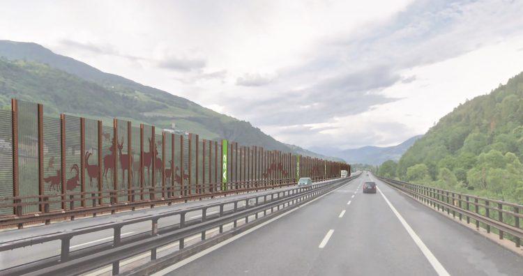 Neue Lärmschutzwände für Villnöß und Feldthurns: Alpine Tierwelt steht im Mittelpunkt