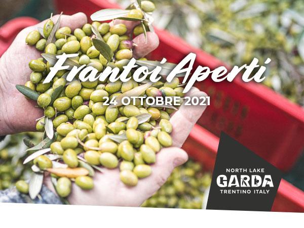 Frantoi Aperti: Ein Sonntag, um die Tradition des Olivenanbaus kennenzulernen